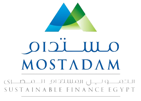 Arab African International Bank - Sustainable Finance